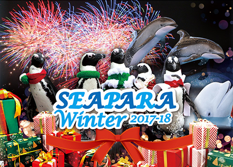 SEAPARA WINTER2017-18